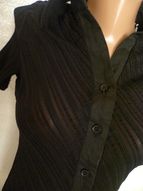 5304cce7199 Блуза обтягивающая по фигуре