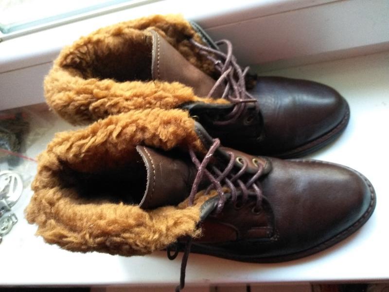 Новые португальские  зимние  натуральные ботинки 37 р 24 см Ecco, цена - 450 грн, #48664581, купить по доступной цене | Украина - Шафа