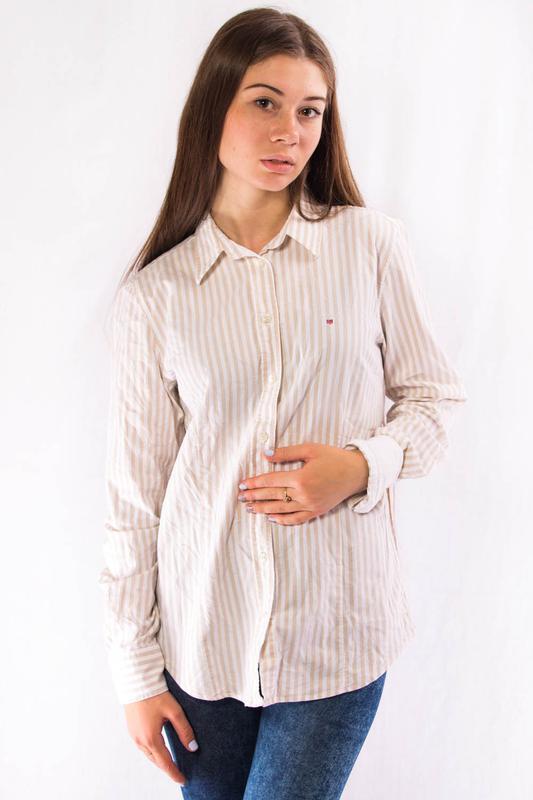 b04c023facc9 Рубашка женская бежевая в полоску gant (40) (l) (Gant) за 199 грн. | Шафа