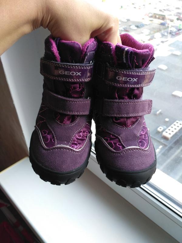 297fe0b20 Зимние ботинки geox для девочки Geox, цена - 1000 грн, #7474932 ...