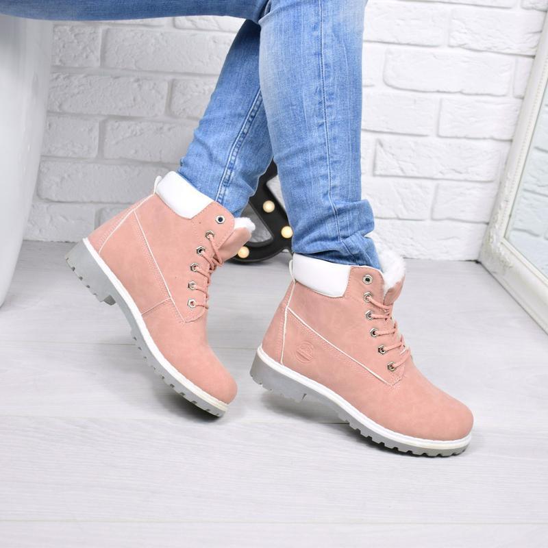 4fc8a8fe67a2 ○ ботинки timber пудра зима ❄, цена - 569 грн,  8152085, купить по ...