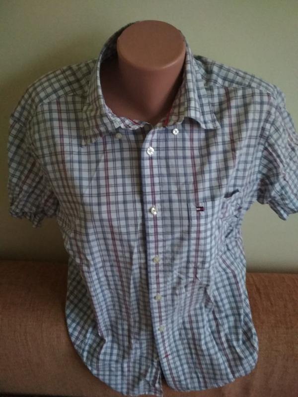 3d1d36c0eca8dba Рубашка мужская легкий 100 % коттон фирмы tommy holfiger1 фото ...