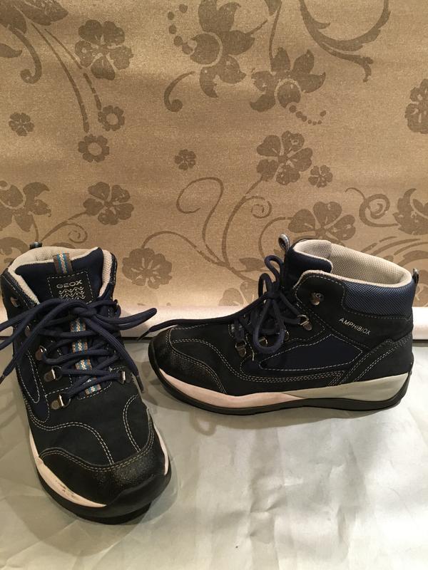 bbed0d293 Демисезонные ботинки мужские geox amphibiox р-38, цена - 550 грн ...