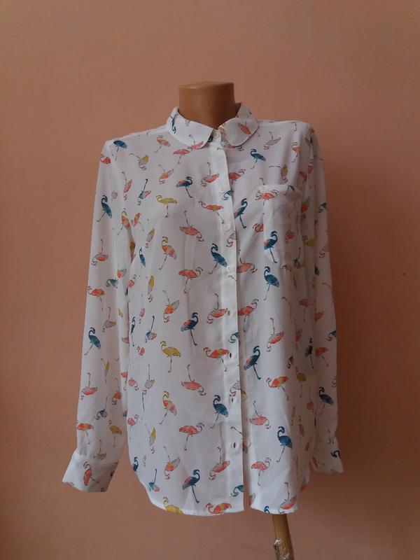 0f5a8dc5fa46 Жіноча сорочка рубашка Next, цена - 200 грн, #19789614, купить по ...