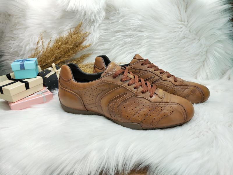 d0e3ee432 Кожаные мокасины туфли geox ( 43 размер ) Geox, цена - 1250 грн ...
